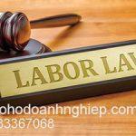 Luật sư tranh tụng vụ án lao động tại Tòa án